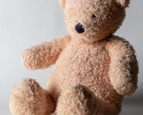 Close up of light brown teddy bear with black eyes and nose.